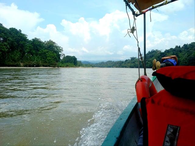 Engage Ecuador - In the Jungle