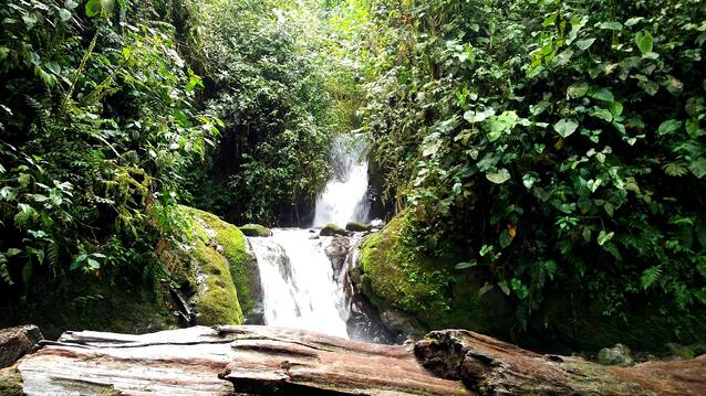 Engage Ecuador - Back to the Mountains