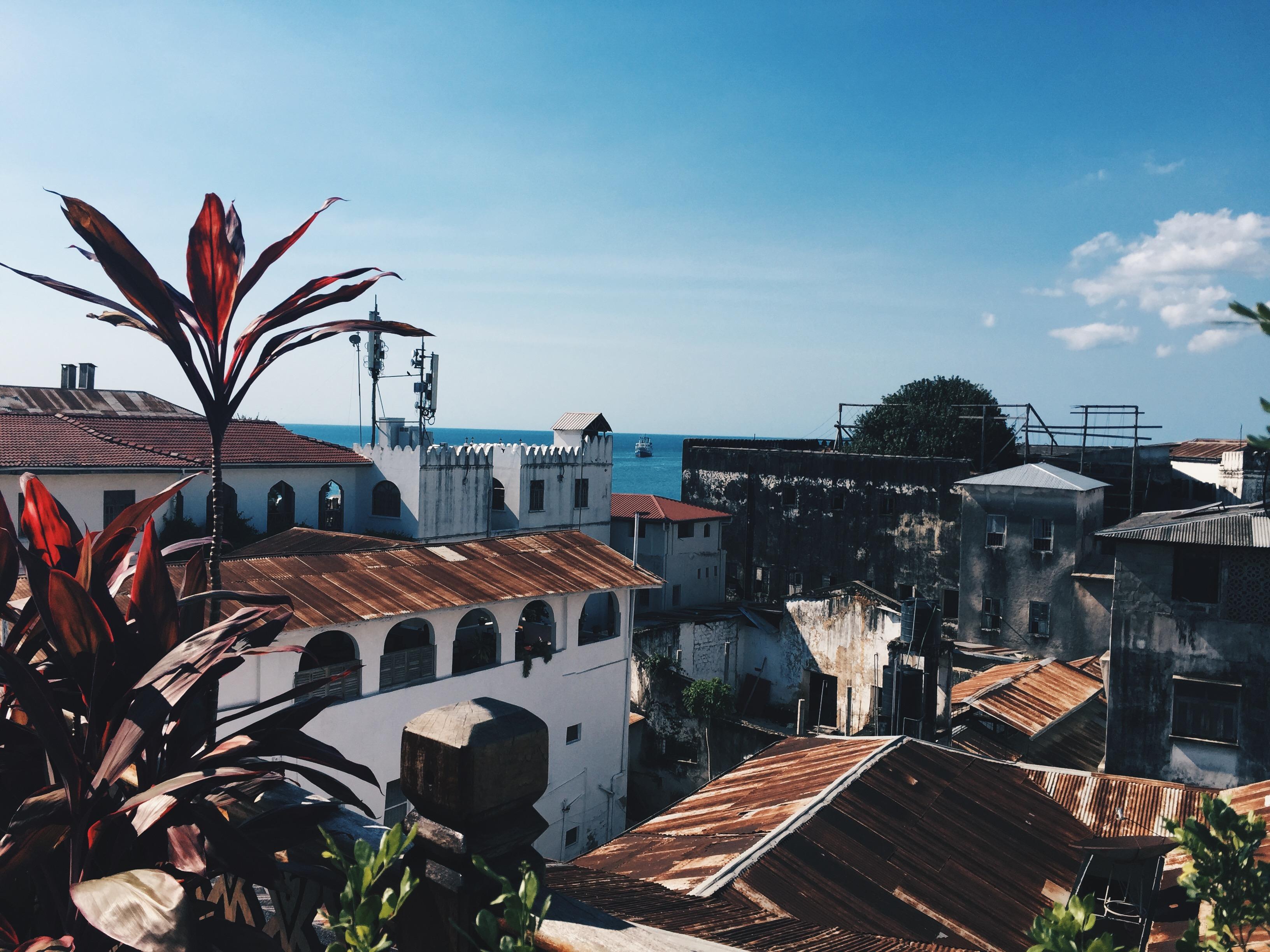 top 5 things to do in zanzibar